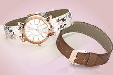 Trina Interchangeable Watch